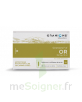 GRANIONS D'OR 0,2 mg/2 ml S buv 30Amp/2ml à Farebersviller