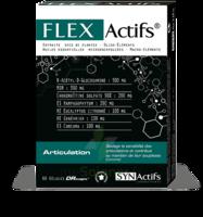 Synactifs Flexactifs Gélules B/60 à Farebersviller