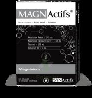 Synactifs Magnactifs Gélules B/60 à Farebersviller