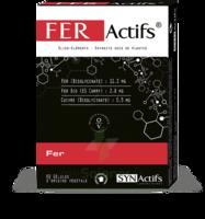 Synactifs Feractifs Gélules B/60 à Farebersviller