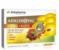 Arkoroyal Royal'fruits Gelée Royale Goji Grenade Baobab Solution Buvable 20 Ampoules/10ml à Farebersviller