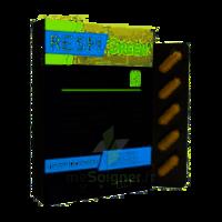 Synactifs Respigreen Bio Gélules B/10 à Farebersviller