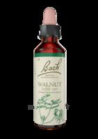 Fleurs De Bach® Original Walnut - 20 Ml à Farebersviller