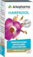 ARKOGELULES HARPAGOPHYTON, 150 gélules à Farebersviller