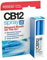 CB 12 Spray haleine fraîche 15ml à Farebersviller