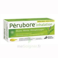 PERUBORE Caps inhalation par vapeur inhalation Plq/15 à Farebersviller
