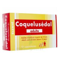 COQUELUSEDAL ADULTES, suppositoire à Farebersviller