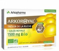 Arkoroyal Gelée royale bio 1500 mg Solution buvable 20 Ampoules/10ml à Farebersviller
