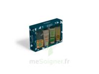Beauterra - Coffret Cadeau - 4 produits à Farebersviller