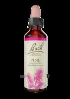 Fleurs De Bach® Original Pine - 20 Ml à Farebersviller