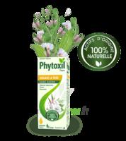 Phytoxil Toux Sans Sucre Sirop Adulte Enfant +2 Ans Fl/120ml à Farebersviller