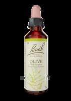 Fleurs De Bach® Original Olive - 20 Ml à Farebersviller