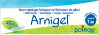 Boiron Arnigel Gel T/45g à Farebersviller